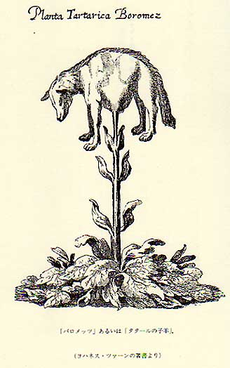 スキタイの子羊
