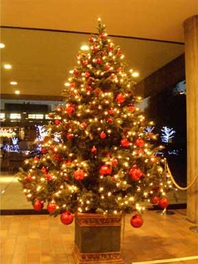 国立西洋美術館内のクリスマス・ツリー
