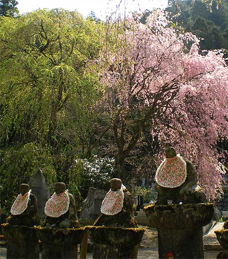 seiunji2009e.jpg