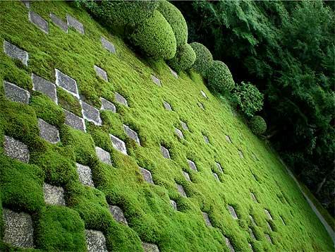 toufuji721g.jpg