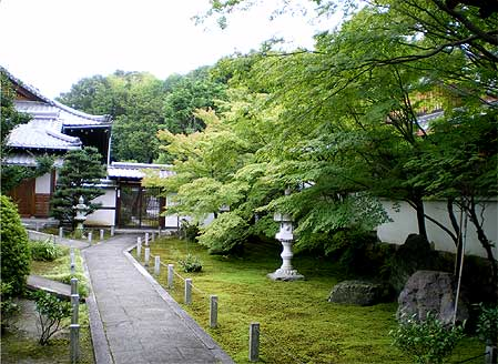 toufukuji20090721c.jpg