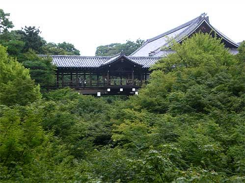 toufukuji20090721g.jpg