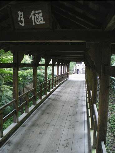 toufukuji20090721w.jpg