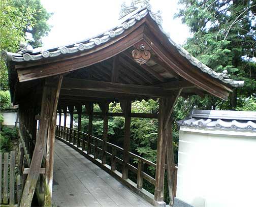 toufukuji20090721x.jpg
