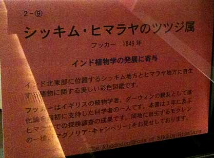 touyoubunko17.jpg