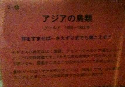 touyoubunko19.jpg