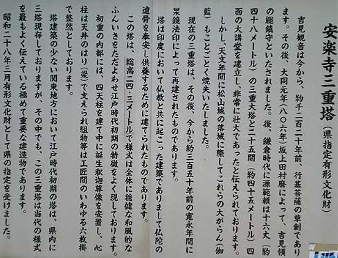 yosimi0428v.jpg